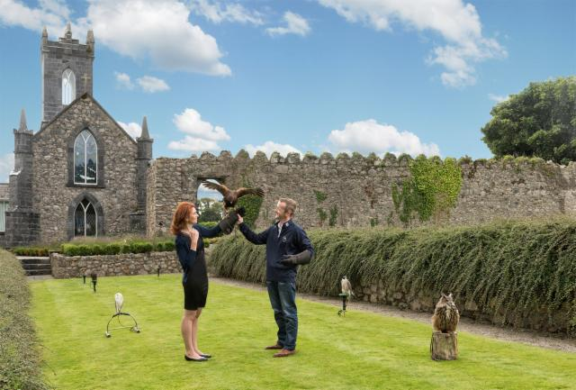 Falconry Experience, Two Night Package