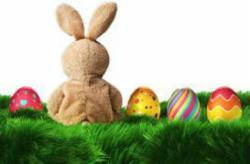 Easter Family Break From €150