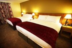 Superior Triple Room with Breakfast (Double & Single Bed)