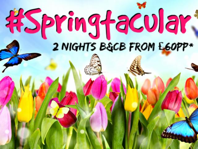 Springtacular 2 Night Break