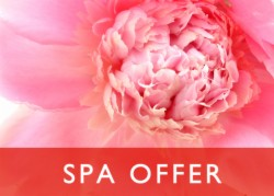Spa Offer - Spa Treat, Breakfast & Dinner Van €209.00