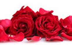 Valentine's special From €140.00