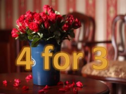 Stay 4 Pay Only 3 Nights (Standard Room for 1 person)
