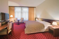 DIRECT5: Deluxe double room with breakfast (additional bed option)