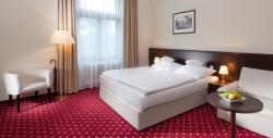 Deluxe double room single use with breakfast