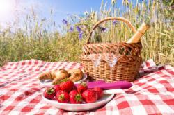 Romantisches Picknick im Gebirge