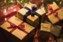 Offerta Speciale Natale & Capodanno