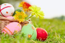 Easter 2018 (Standard single room)